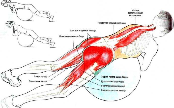 Всего одно простое упражнение для здоровья спины